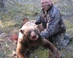 bear27