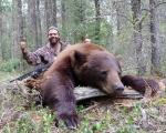 bear35